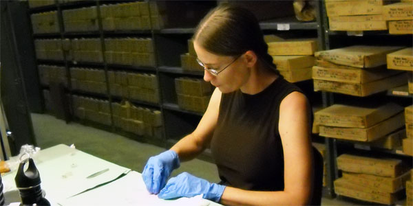 Graduate student, Tenielle Gaither, working with Meteor Crater Sample Collection